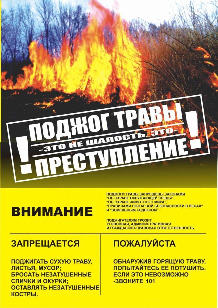 Podzhog-travy-1-726x1024