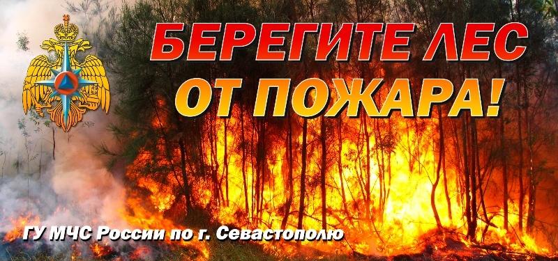 pozharoopasnyy-period-2020_1587502234872421659__800x800